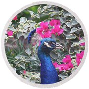 Round Beach Towel featuring the photograph Peacock And Bouganvillas by Donna Smith