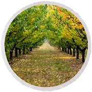 Round Beach Towel featuring the photograph Pear Orchard by Katie Wing Vigil