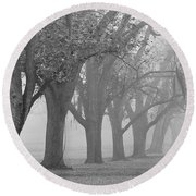 Pecan Grove Round Beach Towel
