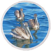 Round Beach Towel featuring the pyrography Pelicans by Lizi Beard-Ward