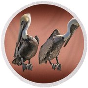 Round Beach Towel featuring the photograph Pelicans Posing by Dan Friend