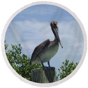 Perched Pelican Round Beach Towel