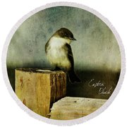 Perched Phoebe Round Beach Towel by Lana Trussell