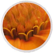 Orange Flower Petals Round Beach Towel