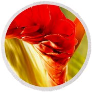 Photograph Of A Red Ginger Flower Round Beach Towel