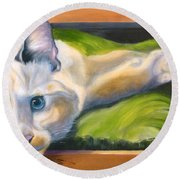 Picture Purrfect Round Beach Towel