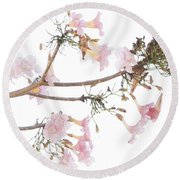 Pink Blossoms In Panama Round Beach Towel
