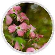 Pink Dogwood Blooms Round Beach Towel