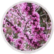 Round Beach Towel featuring the photograph Pink Flower by Andrea Anderegg