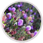 Round Beach Towel featuring the photograph Pink Fuzzy Balls by Clayton Bruster
