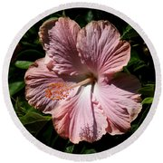 Round Beach Towel featuring the photograph Pink Hibiscus by Karen Harrison