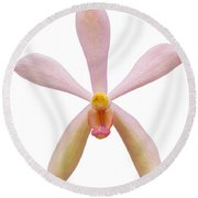 Pink Orchid Head Round Beach Towel by Atiketta Sangasaeng