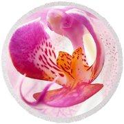 Pink Phalaenopsis Round Beach Towel