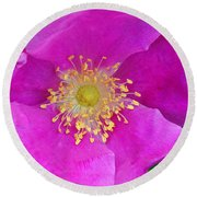 Round Beach Towel featuring the photograph Pink Portulaca by Tikvah's Hope