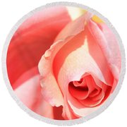 Pink Rose Blooming Round Beach Towel