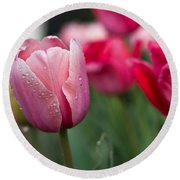 Pink Tulips With Water Drops Round Beach Towel