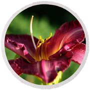 Pistons Of The Pink Yellow Lily Round Beach Towel