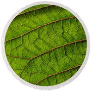 Poinsettia Leaf I Round Beach Towel