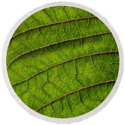 Poinsettia Leaf II Round Beach Towel