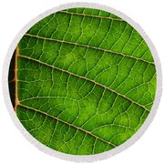 Poinsettia Leaf IIi Round Beach Towel