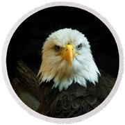 Round Beach Towel featuring the photograph Portrait American Bald Eagle by Randall Branham