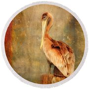 Portrait Of A Pelican Round Beach Towel