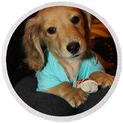 Precious Puppy Round Beach Towel