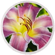 Purple And Yellow Lily Round Beach Towel