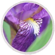 Round Beach Towel featuring the photograph Purple Iris by JD Grimes