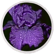 Purple Iris With Water Drops Round Beach Towel