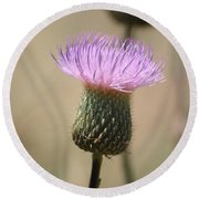 Round Beach Towel featuring the photograph Purple Thistle by Donna  Smith
