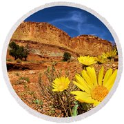 Rainbow Garden Round Beach Towel