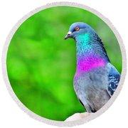 Rainbow Pigeon Round Beach Towel