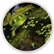 Rana Clamitans Or Green Frog Round Beach Towel