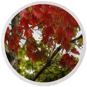 Round Beach Towel featuring the photograph Red And Green Prior X-mas by Michael Frank Jr