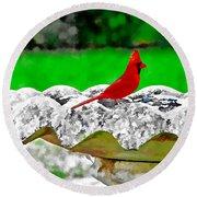 Red Bird In Bath Round Beach Towel