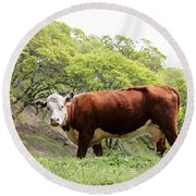 Red Cow Round Beach Towel
