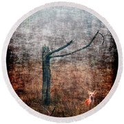 Round Beach Towel featuring the photograph Red Fox Under Tree by Dan Friend