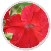 red Petunia Round Beach Towel