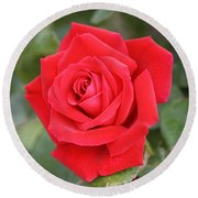 Round Beach Towel featuring the photograph Red Rose by Donna  Smith