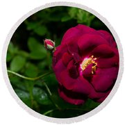 Red Rose In The Wild Round Beach Towel