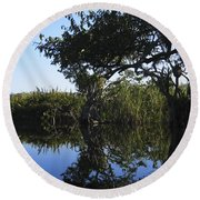 Reflection Of Arched Branches Round Beach Towel by Anne Mott