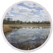 Round Beach Towel featuring the photograph Reflections by Lynn Palmer