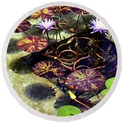 Round Beach Towel featuring the photograph Reflections On Underwater Life by Clayton Bruster