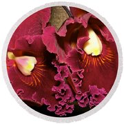 Rich Burgundy Orchids Round Beach Towel by Phyllis Denton