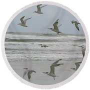 Round Beach Towel featuring the photograph Riding The Wind by Donna Brown