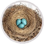 Robins Nest With Eggs Round Beach Towel by Ted Kinsman