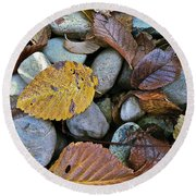 Rocks And Leaves Round Beach Towel by Bill Owen