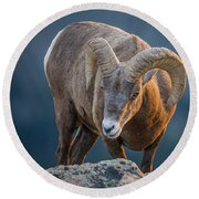Rocky Mountain Big Horn Ram Round Beach Towel