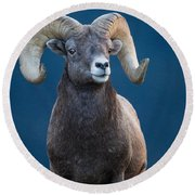 Rocky Mountain Big Horn Round Beach Towel